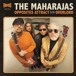 The Maharajas - Opposites Attract sleeve