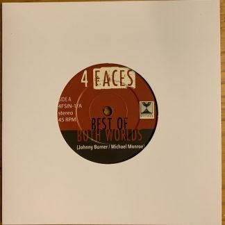 vinyl cover 4 faces